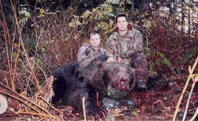 Beruang Grizzly Raksasa